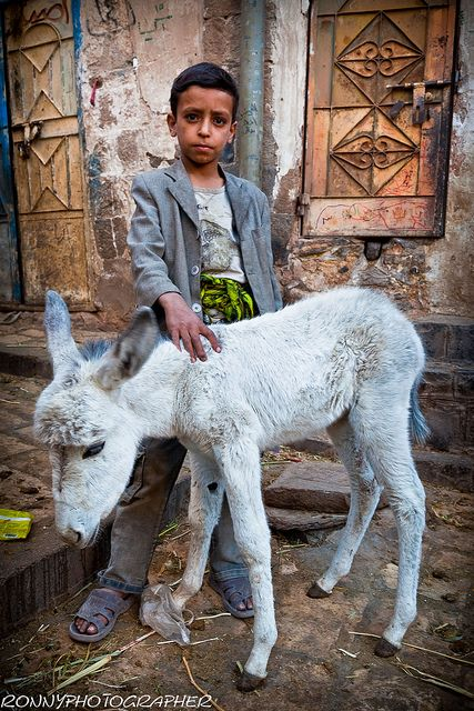 child with a small white donkey in the streets of Sana'a-  Yemen- par Anthony Pappone