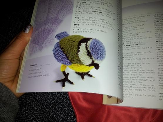 livre crochet tr mesange