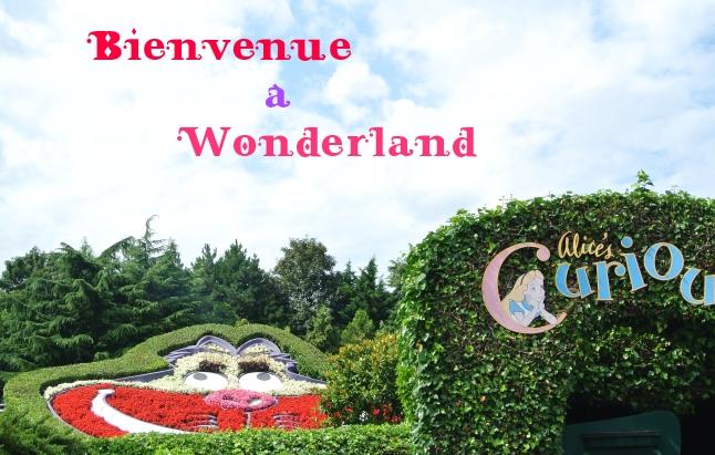 bienvenue a wonderland