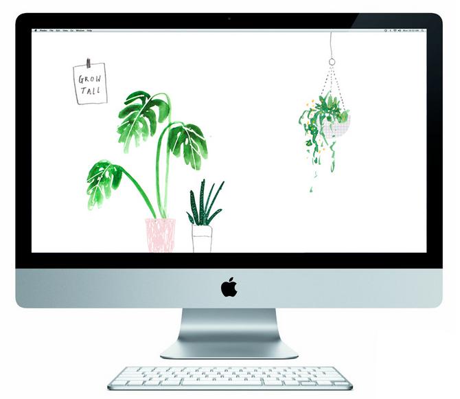 free desktop wallpaper the lovely drawer